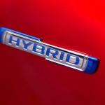 Hybrid oder nicht Hybrid? Das ist hier die Frage